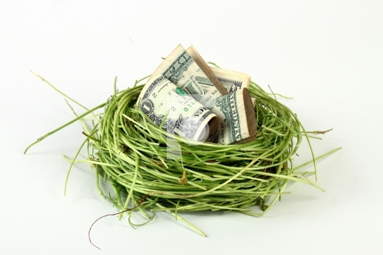 dollars in a bird nest