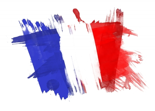 France Flag painted in White Background
