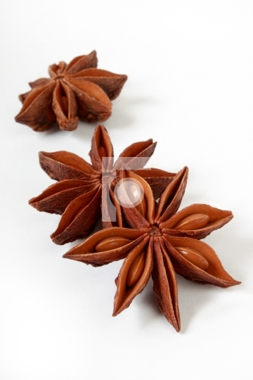 Indian herb star anise in white background