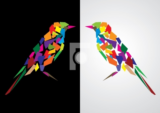 Amazing Colorful abstract bird, Vector Illustration