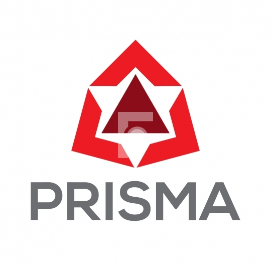 Prisma - Abstract Readymade Company Logo Template Design
