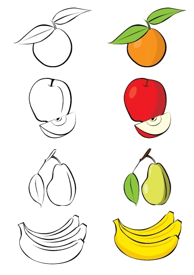Vector illustration of different fruits